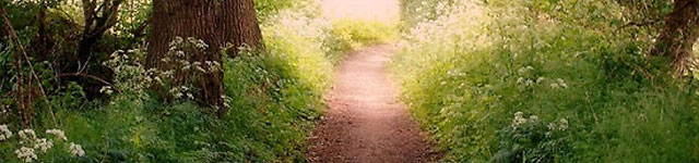 pathway_header